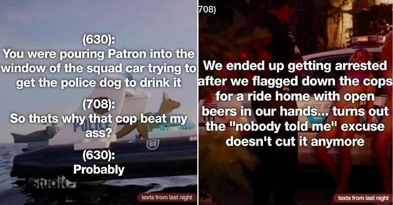 27 Drunk People That Pissed Off The Cops And Got What They Deserved
