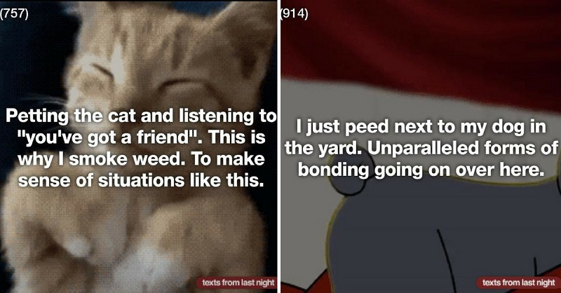 These 27 Texts Prove Pets Make Better BFFs Than Humans