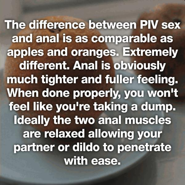 anal-vs-vaginal
