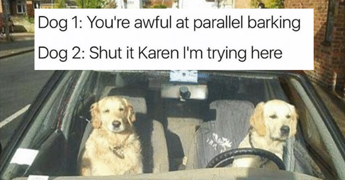 19+ Karen Memes To Share With Every Piece Of S**t Karen You Know