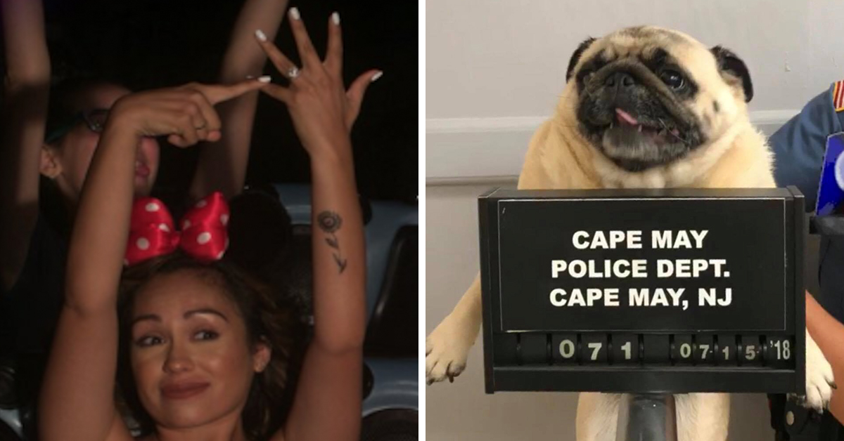 25 Of The Most Viral Photos From This Month